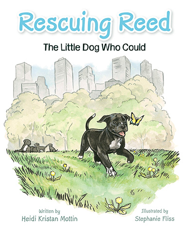 Book cover of Rescuing Reed