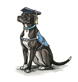 Illustration of Reed as a therapy dog